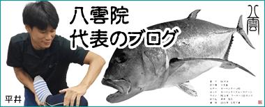 平井代表のブログ